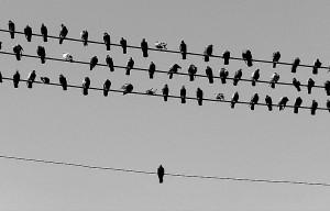 Soledad Одиночество и страх одиночества
